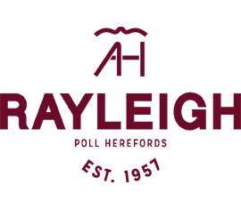 Rayleigh Poll Herefords - Aiming to Breed - Modern, Efficient and Profitable animals